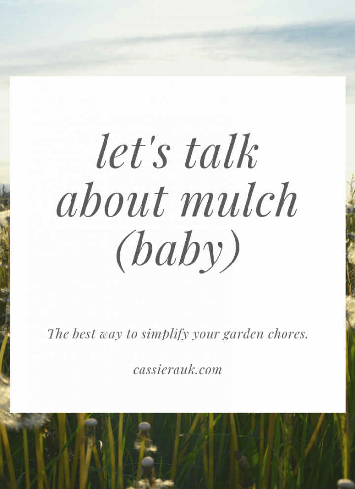 As far as gardening topics go, mulch is not a sexy topic. But mulching your garden is probably the best thing that you can do that will help your garden succeed. #garden