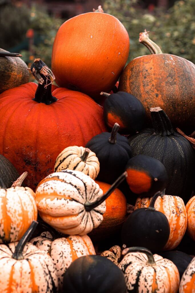 My (strange) Halloween tradition | cassierauk.com