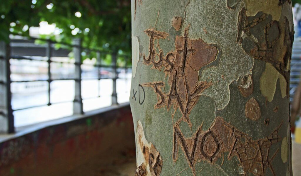 just say no tree